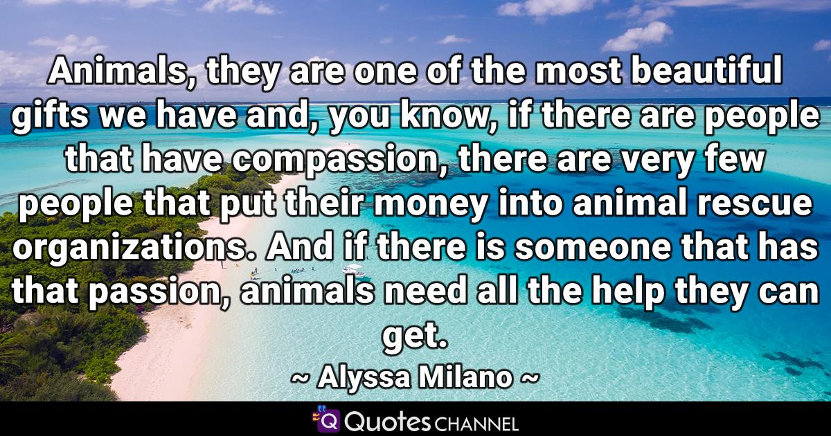 Animals, they are one of the most beautiful gifts we have and, you know, if there are people that have compassion, there are very few people that put their money into animal rescue organizations. And if there is someone that has that passion, animals need all the help they can get.