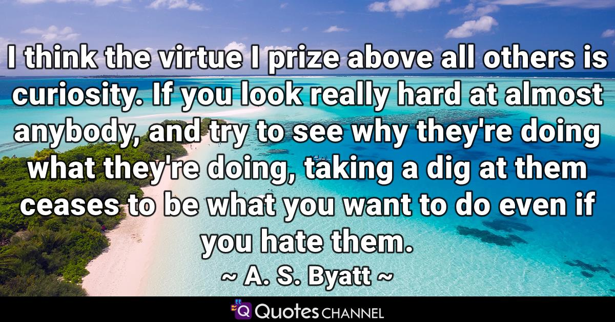 I think the virtue I prize above all others is curiosity. If you look really hard at almost anybody, and try to see why they're doing what they're doing, taking a dig at them ceases to be what you want to do even if you hate them.